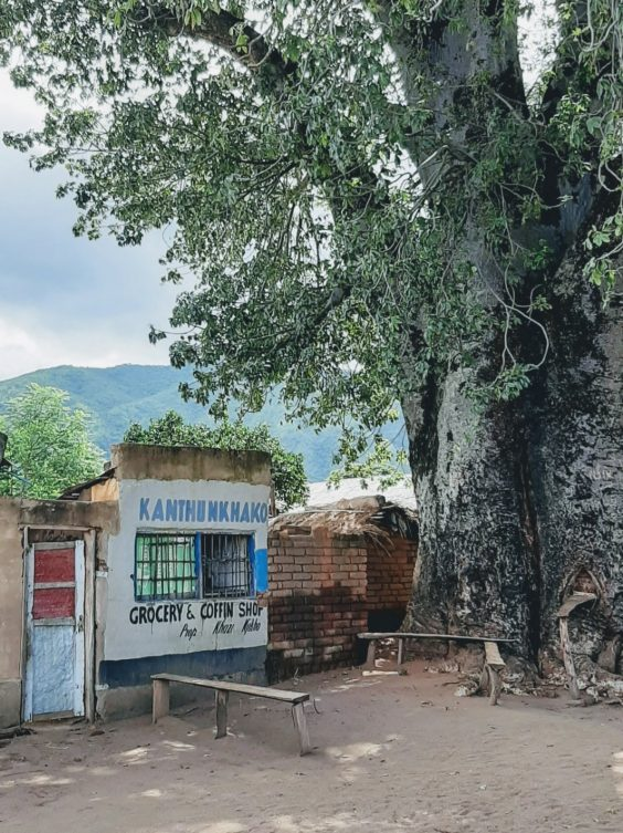 grocery and coffin shop under a baobab tree in Usisya, Malawi